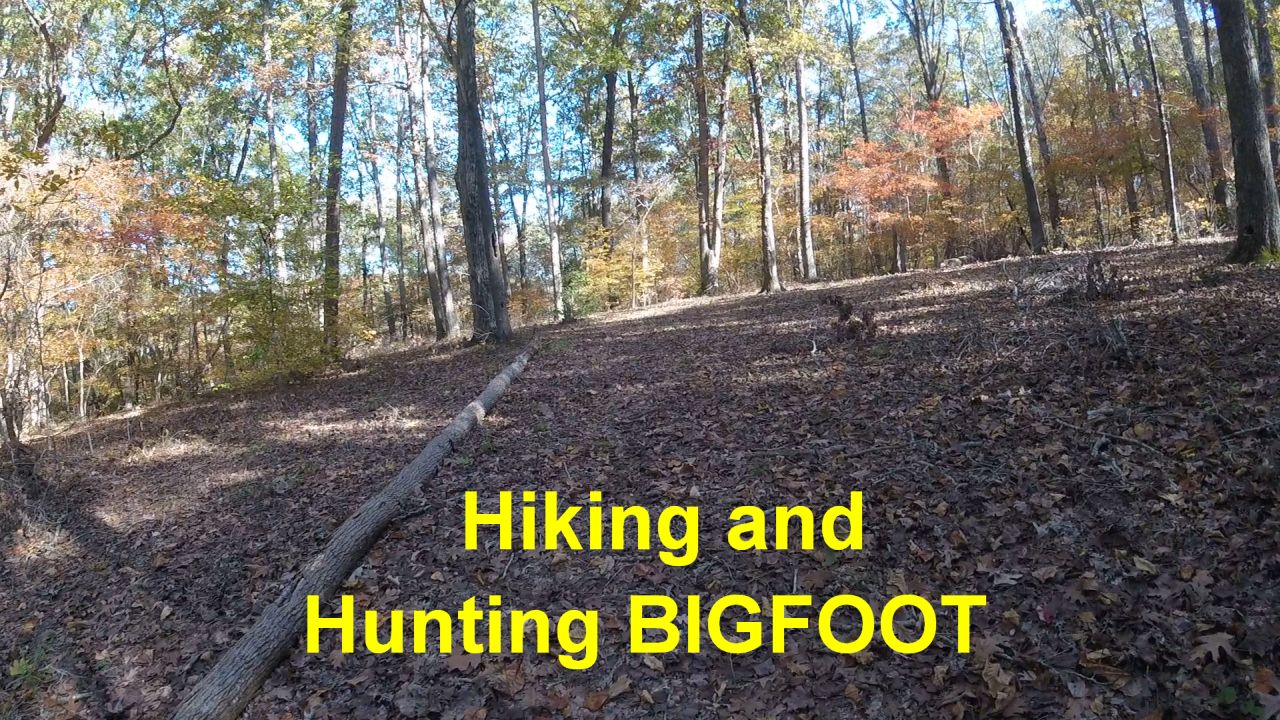 Hiking Uwharrie National Forest Hunting Bigfoot