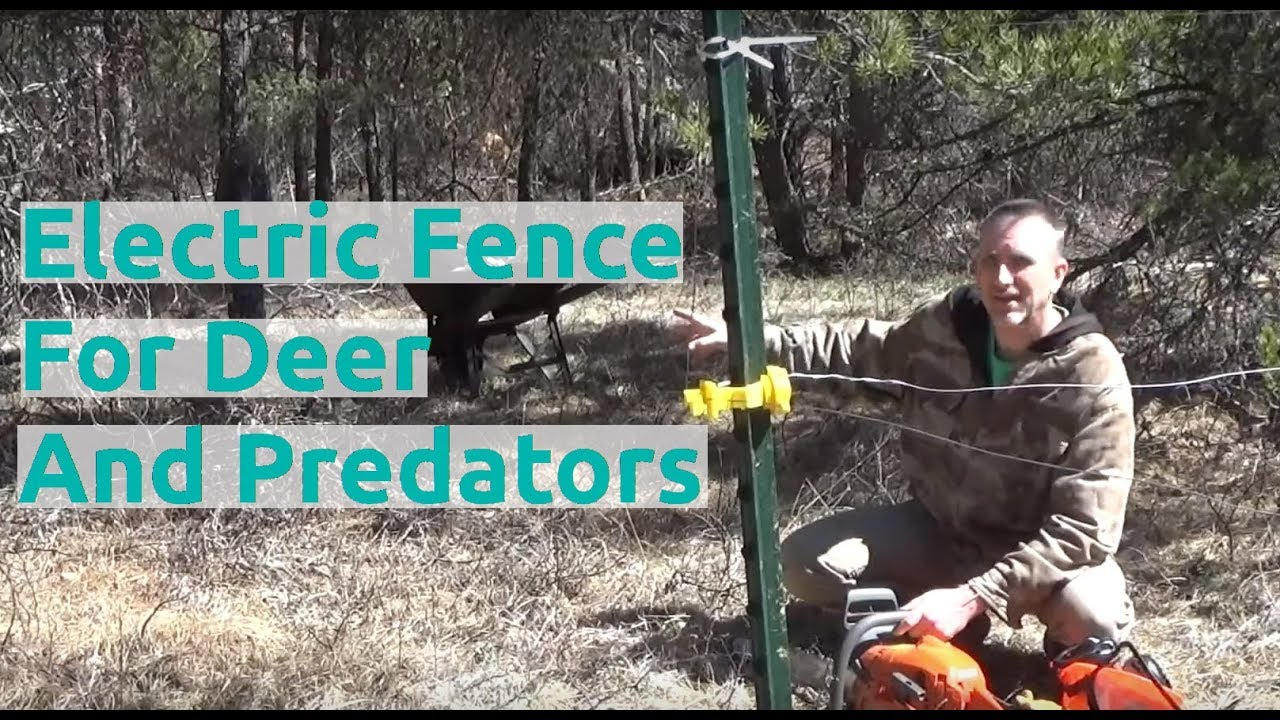 Working On Electric Fence To Stop Predators And Deer