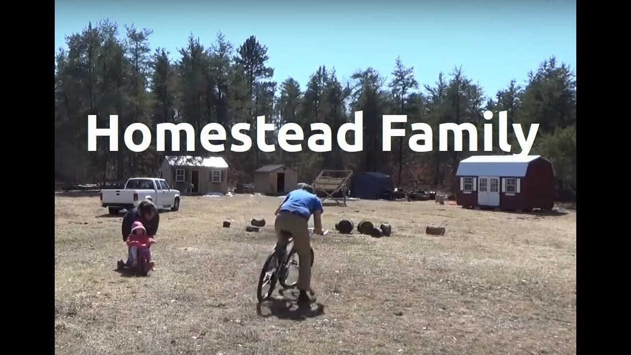 Family Fun Day & Homestead Cleanup Today